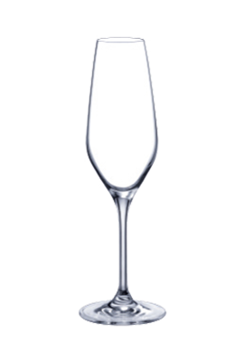 Champagne flute 07 20,5 cl